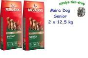 Mera Dog Senior