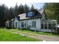 secluded, romantic woodland cottage near sea, sleeps 4
