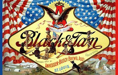 Anheuser Busch Black & Tan - 1899 Poster 11x17