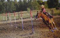 Pole Bending Bases Set of 6