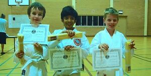 Doubleview Karate Club - World Shotokan Karate-do Doubleview Stirling Area Preview