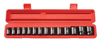 12 Point Sae Socket - Tekton 14Pc. 1/2