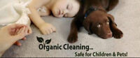January Carpet Cleaning Special