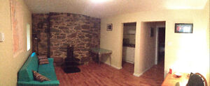 Cozy Downtown 1 Bedroom Apartment for Rent!