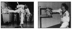 Arts martiaux: cassages de planche en puissance1500,00 $