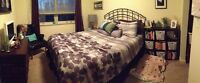 Quiet Furnished Shared Condo on Green Belt