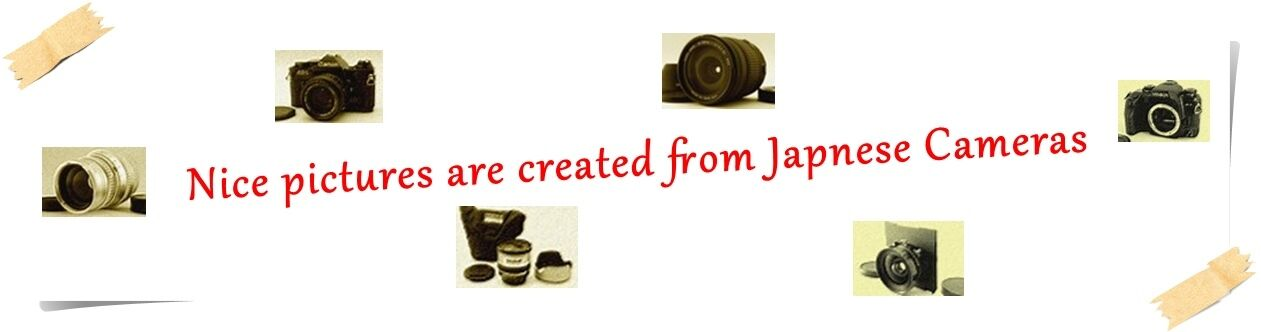 Japanese Classic Cameras Search