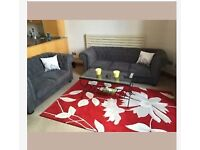 Rug red hand tufted