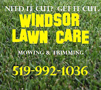 NEED LEAF CLEAN-UP? EAVES? AERATION?  Call DENNIS 519-992-1036