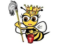 Clean Bee Home Cleaning and Ironing Service Bearsden/Milngavie Areas