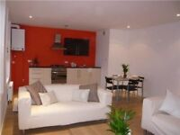 Modern two double bedroom flat in Camberwell.