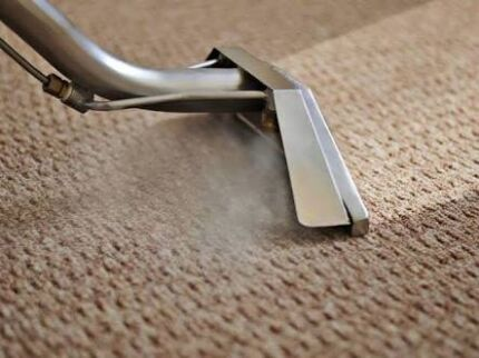 Go cleaners carpet steam cleaning