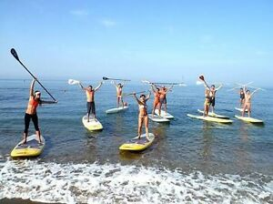 SUP LESSONS Elanora Gold Coast South Preview