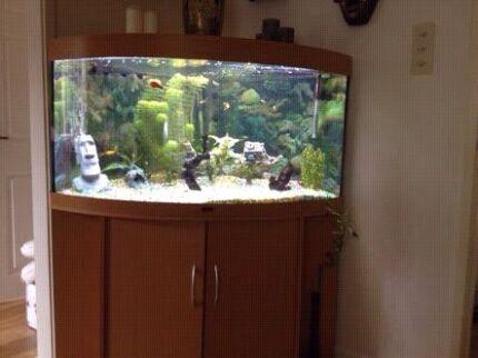 Corner curved (360 ltr.?) Fish tank Perth CBD Perth City Preview