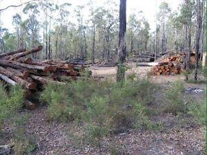 WANTED: Land to cut wood ,Jarrah Dead Standing Trees, Woodpiles Kalamunda Kalamunda Area Preview