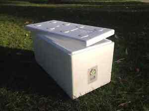 Wanted foam box Maddington Gosnells Area Preview