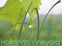 Full time Dynamic, Experienced General Manager required for Holmfirth Vineyard