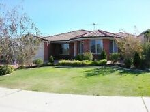 House for Rent - Currambine Currambine Joondalup Area Preview