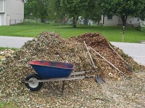 Bulk forest mulch & Firewood Greenbank Logan Area Preview
