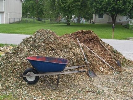 Bulk forest mulch & Firewood