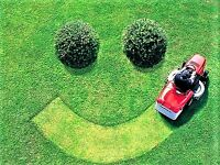 Lawn Care. Rolling-Aerating-Cutting-Maintenance