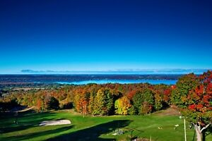 Michigan Resort Condo Sleeps 8 for only $115,000