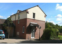 Property to Rent- Ide Exeter