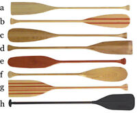 any condition canoe paddles
