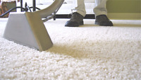 Looking for Carpet Cleaning technician