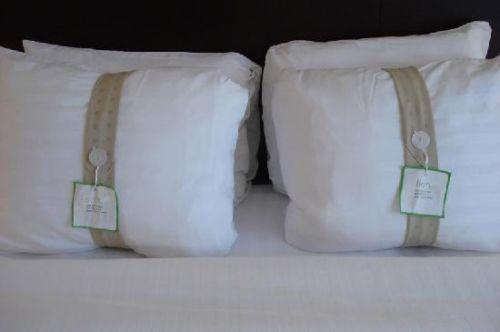Holiday inn pillows ebay for Comfort inn pillows