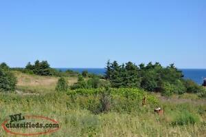 Serviced Lot with Ocean View for sale in Pouch Cove!!