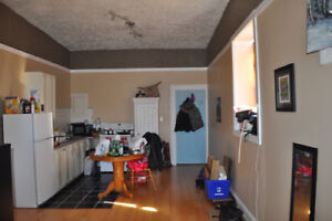 Nice and clean large one bedroom apt for rent in downtown Whitby