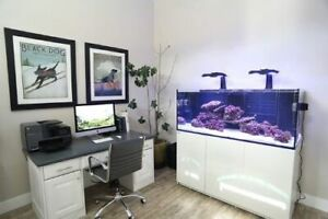 Red Sea Reefer Aquariums Salt Water Reef Tank Setup