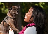 Free, safe and flexible dog walking and dog boarding service.