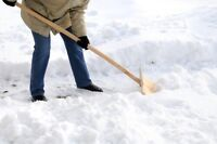 I am a student looking to shovel snow or do yard work
