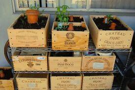 Wine box flower pot, wooden wine box