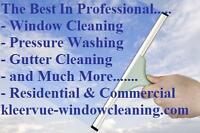 Professional Window Cleaning & Pressure Washing - Niagara Region