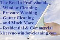 PROFESSIONAL WINDOW CLEANING & PRESSURE WASHING - NIAGARA REGION