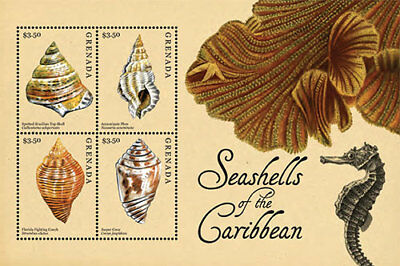 Grenada- Shells of the Caribbean Stamp - Sheet of 4 MNH