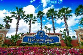 Amazing value Holiday Rental 1 Bedroom Villa near Disney Orlando Florida (up to 4 guests/or family)