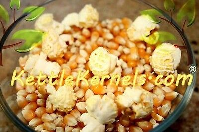 5 Lbs Of Mushroom Popcorn Kernels    Free Shipping    Make Your Own Kettle Corn