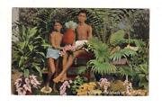Ceylon Postcard