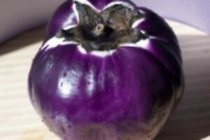 Eggplants only $13.00 Roma tomatoes $25.