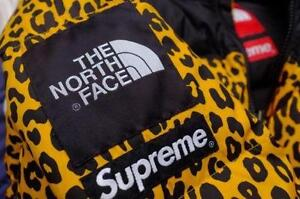 Supreme north face coats jackets ebay supreme x north face leopard gumiabroncs Gallery