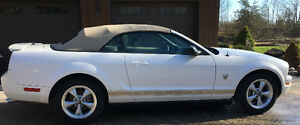 2009 45th Anniversary Ford Mustang Convertible