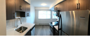 1br - 700 ft - Fully Renovated 1 Br Apartment Lower Lonsdale