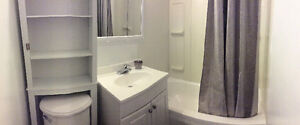 Large 2 Bedroom + Finished Basement in Century Home Downtown Kitchener / Waterloo Kitchener Area image 3