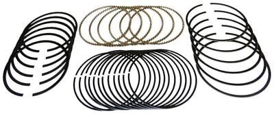 Mahle Buick Pontiac Chevy 3.1L 189ci MOLY 41473CP std Piston Ring rings 1988-95