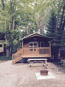 2 Bedroom Cabin Cottage in Muskoka  +Pool +Forest +Kahshe River