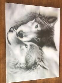 A special 3D picture of 2 beautiful Wolves for just £10 ovno